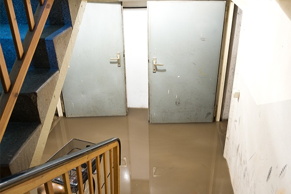 flooded basement cleanup services